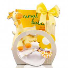 Welcome Home Baby Starter Gift Basket