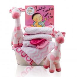 Terrific Twins Gift Basket - Girl