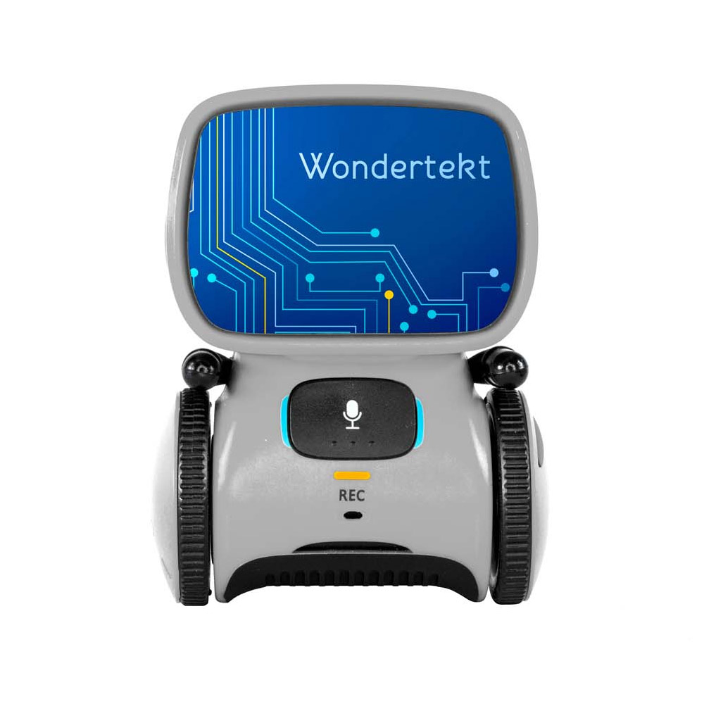 Custom Aaytee™ Touch Control Robot with Voice Activation
