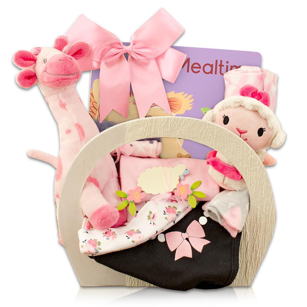 Welcome Home Baby Girl Starter Gift Basket