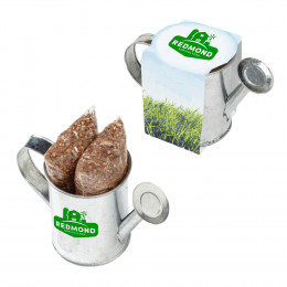 Custom Seed Sensations Watering Can Planter