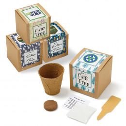Custom Pine Tree Growables Planter In Kraft Gift Box