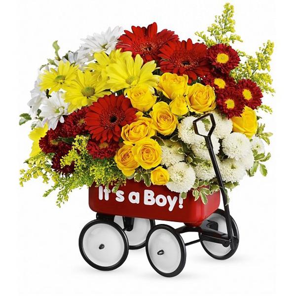 Baby Boy's First Wagon
