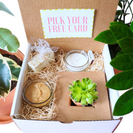 The Sweet Little Box