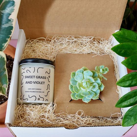 Succulent Candle Box