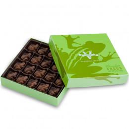 V Chocolate Milk & Dark Chocolate Frogs